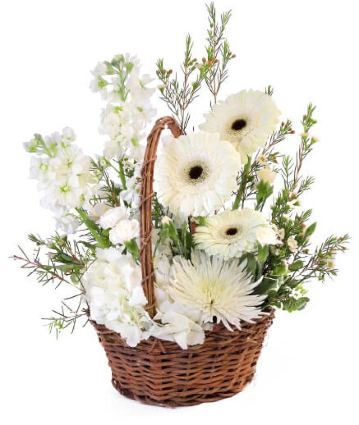 Pristine White Basket